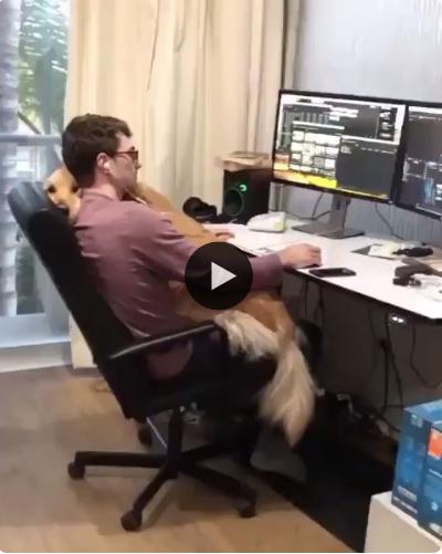 Quando você precisa levar o filho para o trabalho