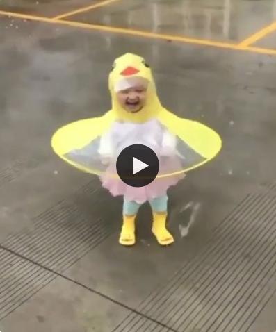 Essa é a patinha mais fofa e feliz que você já viu