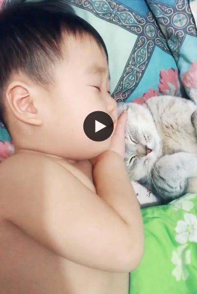 Que coisa mais linda e fofa ver esses bebes dormindo