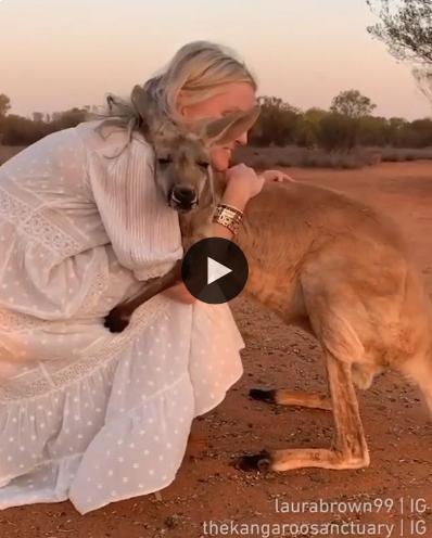 É muito amor envolvido entre a moça e o canguru