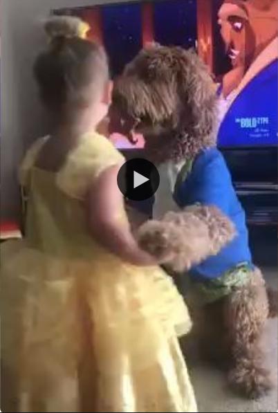 Essa menininha escolheu uma verdadeira ferra para encenar com ela